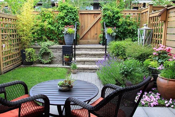 Landscape garden in Townhouse