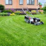 A Tunbridge Wells Lawn